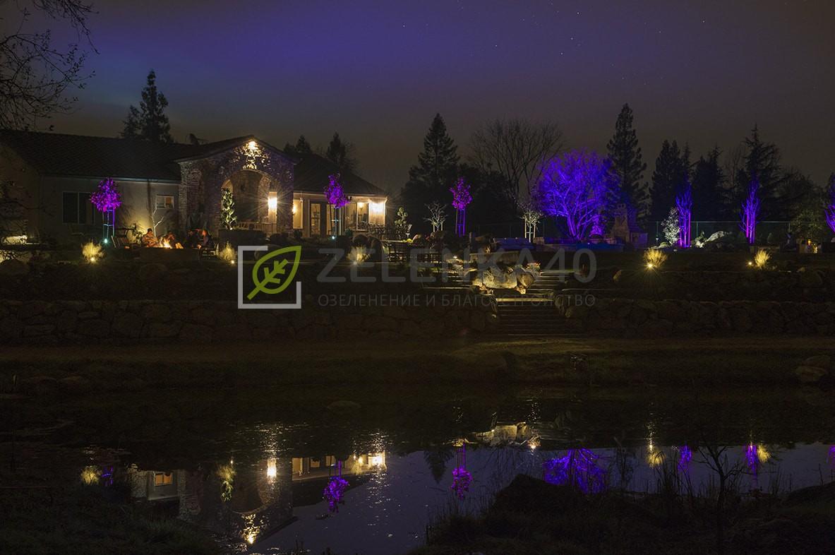 ZDC_Sacramento_DSC_8282_RT_Purple-min